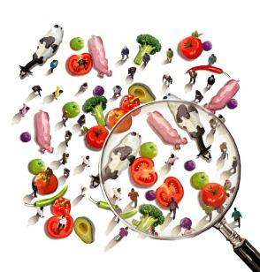 Alimentos bajo la lupa